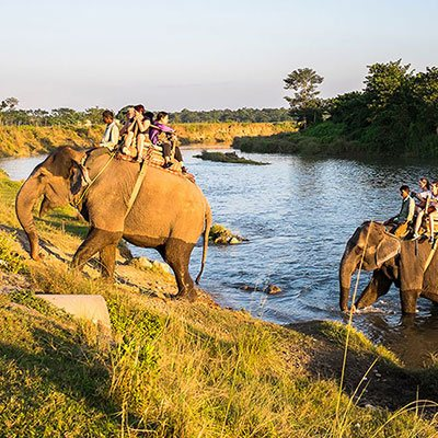 Explore the wildlife at Chitwan National Park, a World heritage Site just 150 kms from our hotel in Bhairahawa for a thrilling experience.